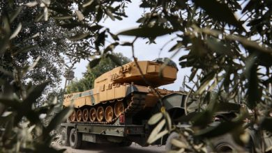 Turkish tank through olive trees