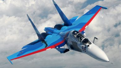 Russian Air Force Su-30