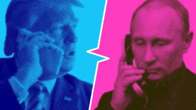 Did Putin influence Trump's plan to withdraw from Syria?