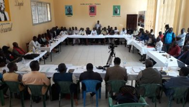 African Union panel meets CAR armed groups