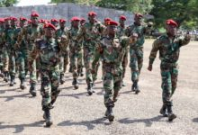 Central African Republic troops parade