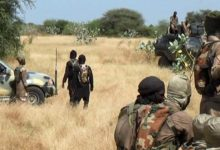Boko Haram - Islamic State West Africa Province