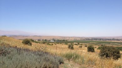 Syria from the UNDOF outpost in the Golan Heights