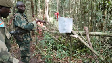Congo soldiers next to a ADF booby trap