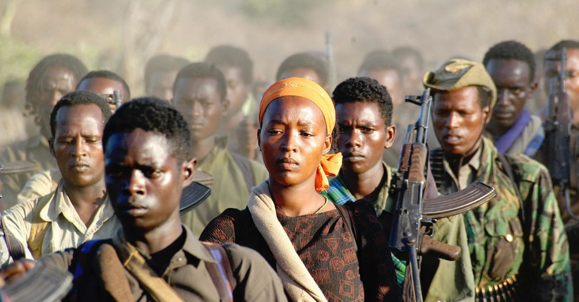New Ethiopian offensive suggests difficulty in managing