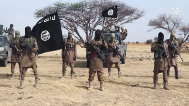 Islamic State militants in Nigeria
