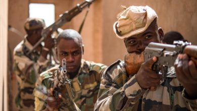 Niger Armed Forces at Nigerien Air Base 201