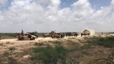 Somali army operation