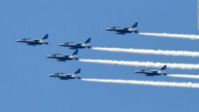 Aerial performance of Japan's Self-Defense Force