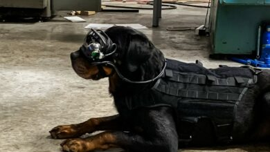 A new technology provides military working dogs with augmented reality goggles that allows a dog's handler to give it specific directional commands while keeping the warfighter remote and out of sight