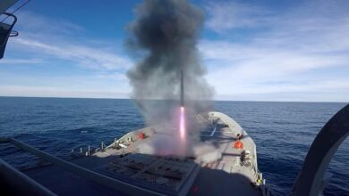 Sea Sparrow Missile
