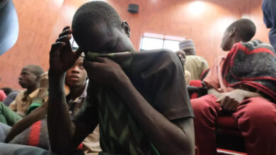 Kidnapped boys after their release in Nigeria